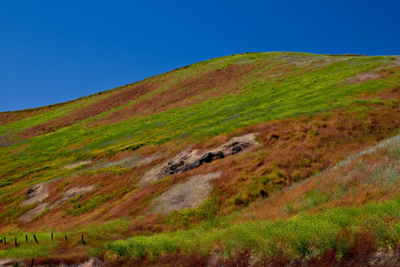 Spectacular Springtime colors on the hills of The Palouse in Washington.<br /> Photo © Carl Clark