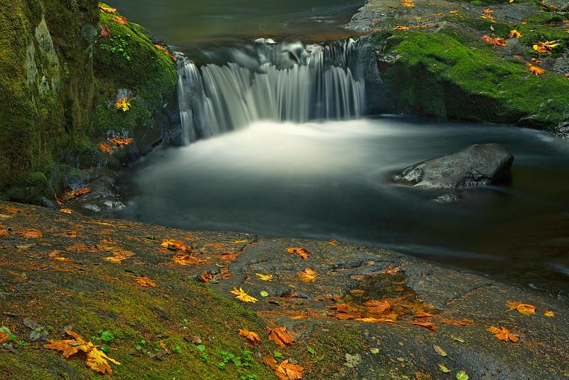 One of the many cataracts along Sweet Creek near Mapleton, Oregon.<br /> Photo © Carl Clark