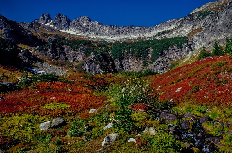 Autumn color explosion in Boulder Basin beneath Clark Mt - Washington Cascades.<br /> Photo © Carl Clark