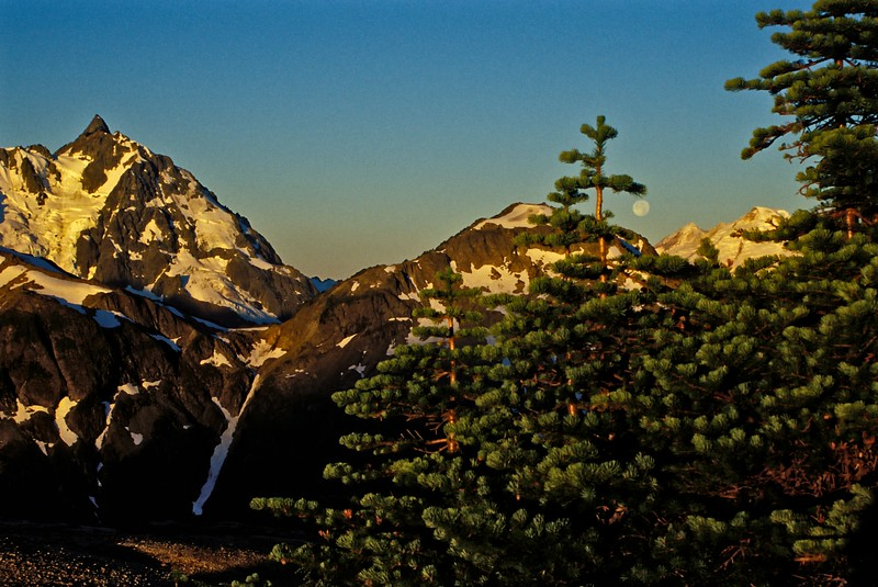 Taken in the early morning from our campsite at Hannegan Pass, this view is of Mt. Shuksan.<br /> © Cindy Clark