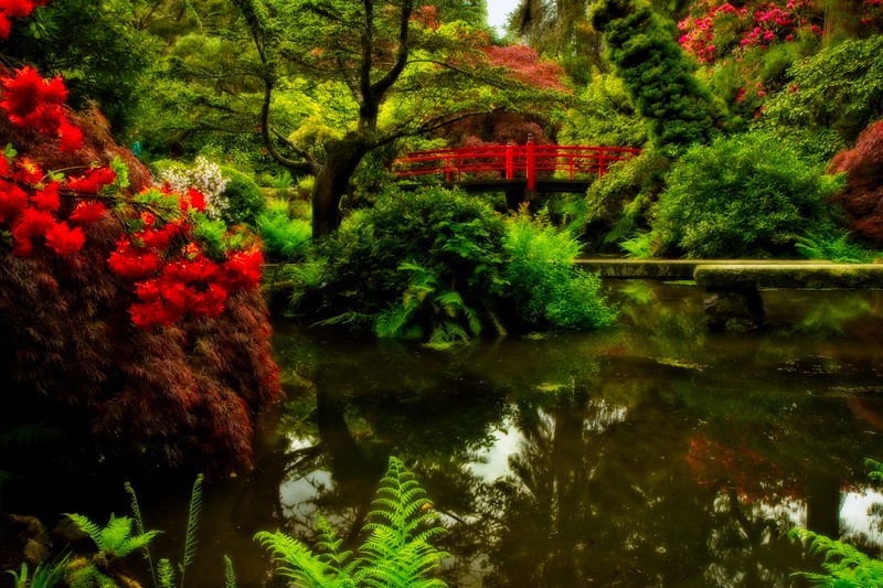 Kubota Gardens, Seattle.<br /> Photo © Carl Clark
