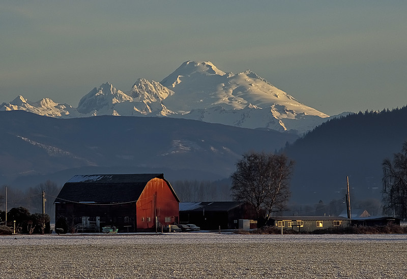 Farmland beneath Mt Baker in the Skagit River valley.<br /> Photo © Carl Clark