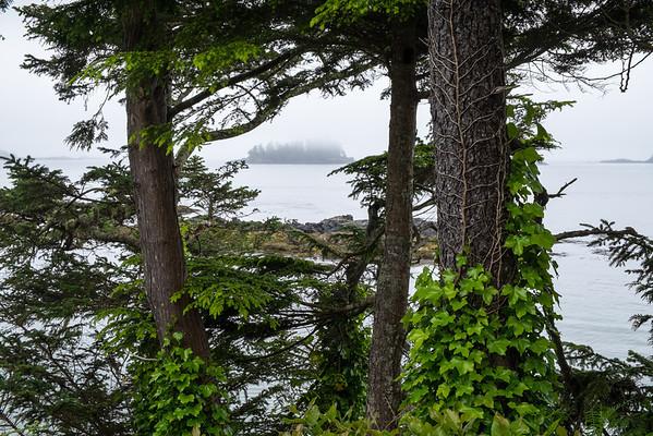 Middle Beach (near Tofino), Vancouver Island, British Columbia