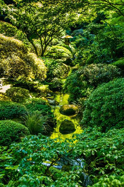 Stream | Japanese Gardens | Portland
