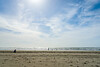 Beach-Fort Stevens State Park