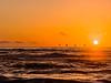 Pelicans & Sunset Ocean