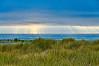 Beach | Sun Rays