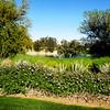 Nick Faldo Golf Course at Marriott Shadow Ridge in Palm Springs