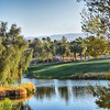 Morning at Marriott Shadow Ridge in Palm Desert California