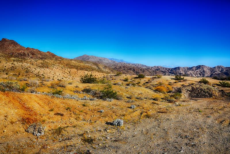 Desert Scene Near Palm Springs California 3