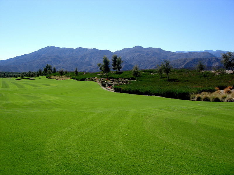 Palm Springs Golf Course 2
