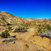 Desert Scene Near Palm Springs California 1