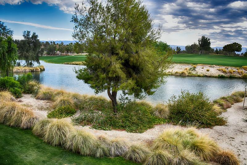 Near the Golf Course at Marriott Shadow Ridge in Palm Springs California