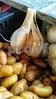 20140906_072321 Garlic and Potatoes PS