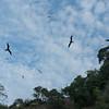 Bona Island and Isla Iguana Wildlife Refuge