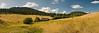 High Mountain Meadow