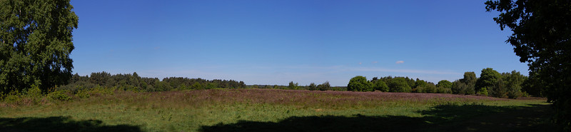 Knettershall Heath - Suffolk