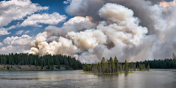 Forest fire located in LeHardy Canyon, Yellowstone National Park.  The fire started on Wednesday July 30, 2008 in a powerline corridor with the suspected cause being the power lines.  Photograph taken on the 6th day of the fire.  This image is best printed in a 1x2 aspect ratio.