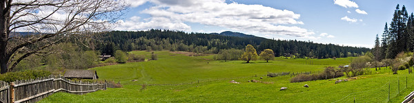 Three image panorama of Turtleback Farm.  Orcas Island, San Juan County, Washington April 2011.  My wife is a school teacher and on her spring break we took a couple day off to relax and get away from it all.  When we got on the ferry to go to the island there was a group of about 100 middle school children on the boat heading to a school camp.  I though Sherryl was going to jump of the boat but when we got to the farm and were greeted by this view all thoughts of kids vanished and she was able to relax if only for a little while.  This image is best printed in a 1x4 aspect ratio.