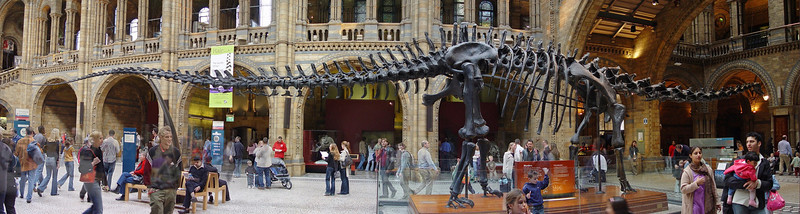 2004-09-19_02702 <span class=ger>Dinosaurierskelett im Naturkundemuseum in London (Panorama aus 4 Teilbildern)</span><span class=eng>Dinosaur skeleton in the natural history museum in London (panorama out of 4 pictures)</span>