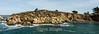 Granite Point - Point Lobos #6874_stitch
