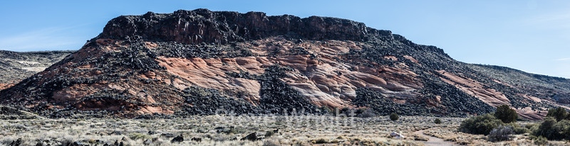 Whiptail - Snow Canyon #2830-Pano