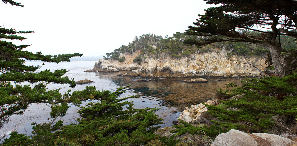 Point Lobos, August 21, 2009  Canon 40D with cheap lens 7 shots verical hand held stiched in PTGui adjusted in CS4 Lab color.