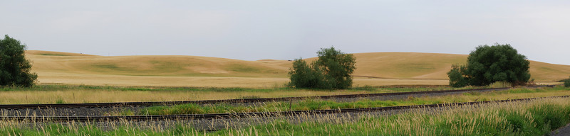 <b>The Palouse</b><br>The Palouse is a region of the southeastern Washington and adjacent Idaho that has rolling hills on deep soils .  It is a major wheat-producing agricultural area.  This picture was taken from the bike trail that connects Pullman, WA with Moscow, ID.