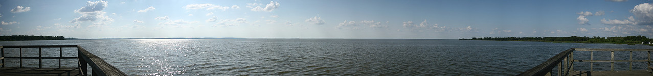 Lake Apopka_Panorama1