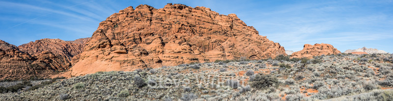 Whiptail - Snow Canyon #2925-Pano