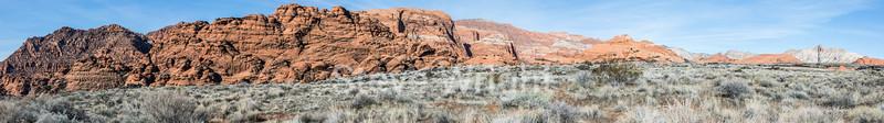 Whiptail - Snow Canyon #2847-Pano