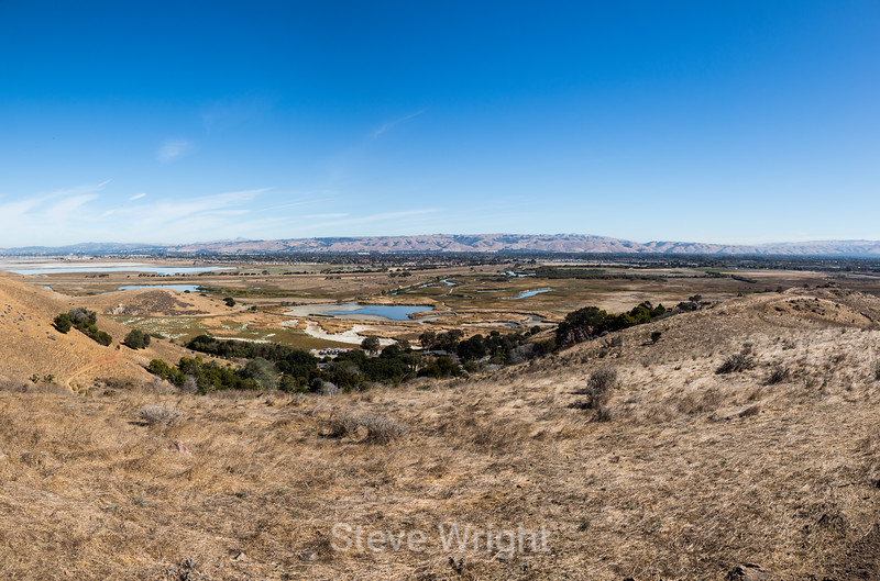 View from Coyote Point #4724-Pano