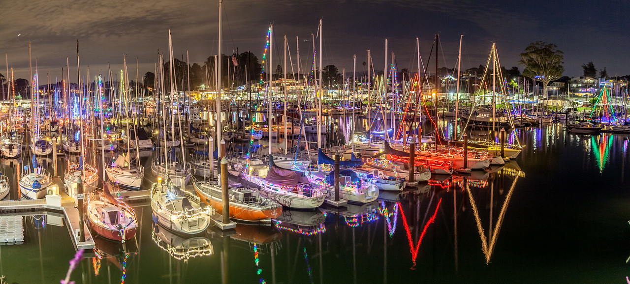 Marina Christmas Lights