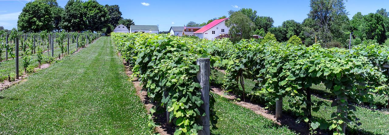 Mallow Run Winery - Bargersville, Indiana