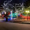 Christmas at the Zoo -  Indianapolis, Indiana