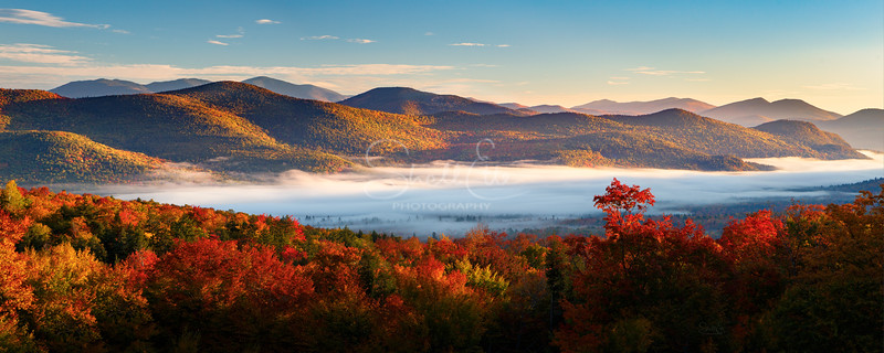 Sunrise Autumn Fog Over Bartlett NH Tree