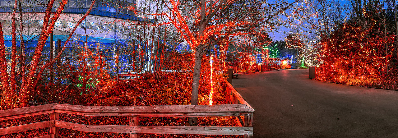 Christmas at the Zoo -  Indianapolis, Indiana