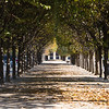 Jardin du Palais Royal, f/5, 1/200, iso 200, 95 mm