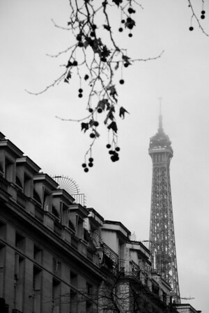 Eiffel Tower above apartments