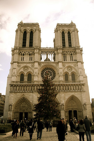 Tree and western face, Notre Dame de Paris