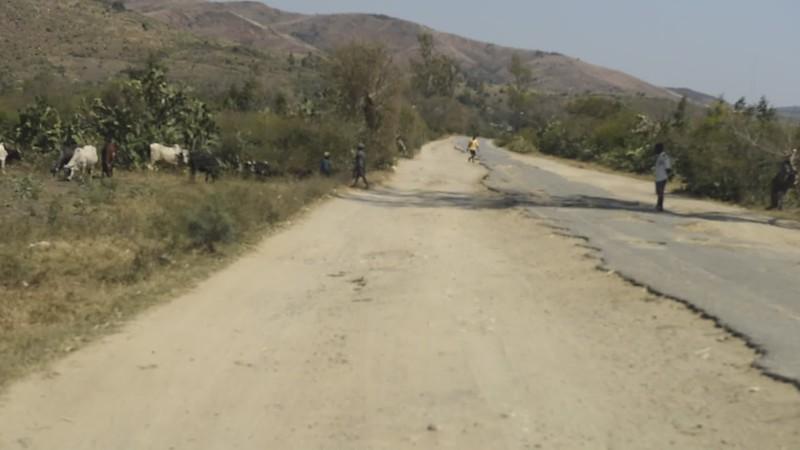Road to Berenty