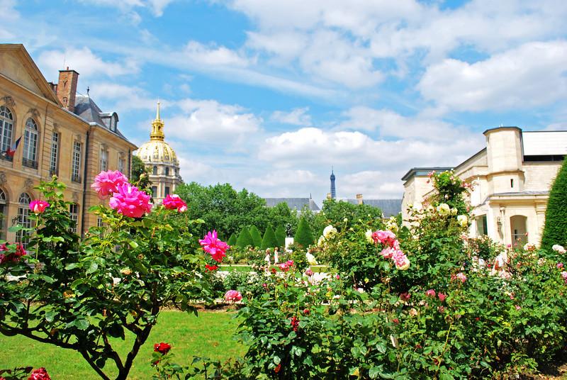 Paris Rodin's Garden June 2009