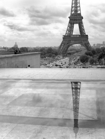 Parisian Reflection