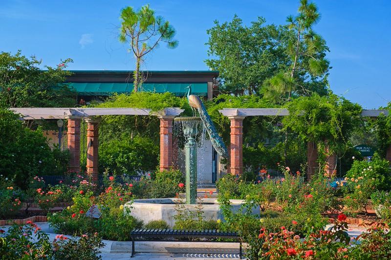 """WPP1338  """"Peacock Fountain in Rose Garden"""""""