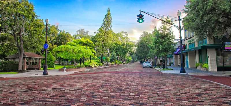 """WPP1303  """"Red Brick Streets on Park Avenue"""""""