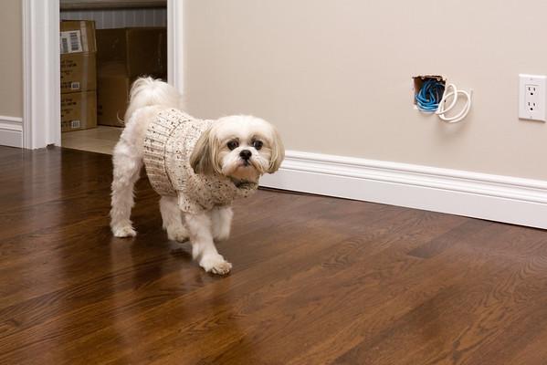 Kip explores our master suite...