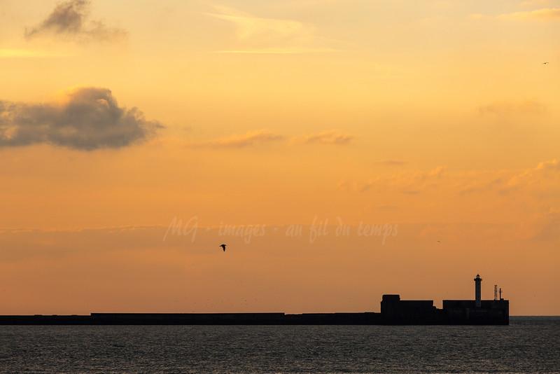 Boulogne sur merf/8, 1/400, iso 200, 200 mm