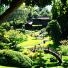 Japanese Garden at Huntington Library in Pasadina California 2