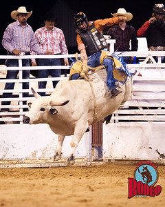 2nd annual Gainesville Bulls & Broncs Rodeo