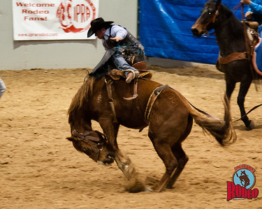 Broncs - Southern Rodeo Company
